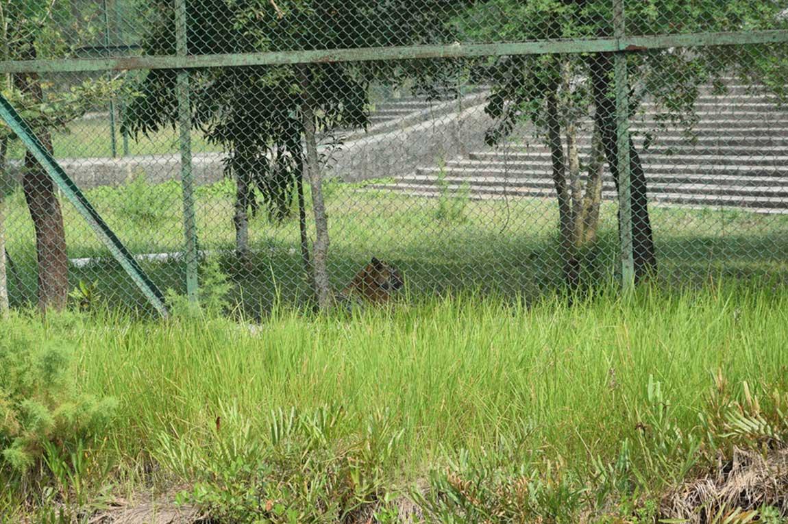 tiger reserve