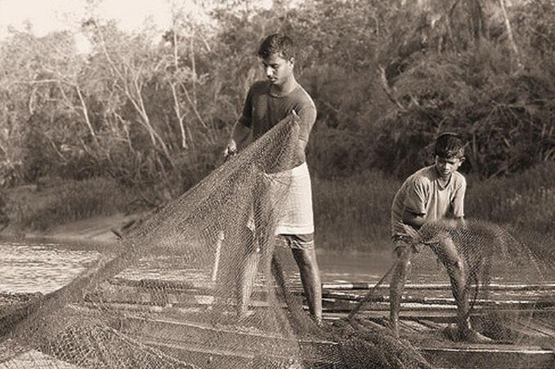 Sundarbans Locals